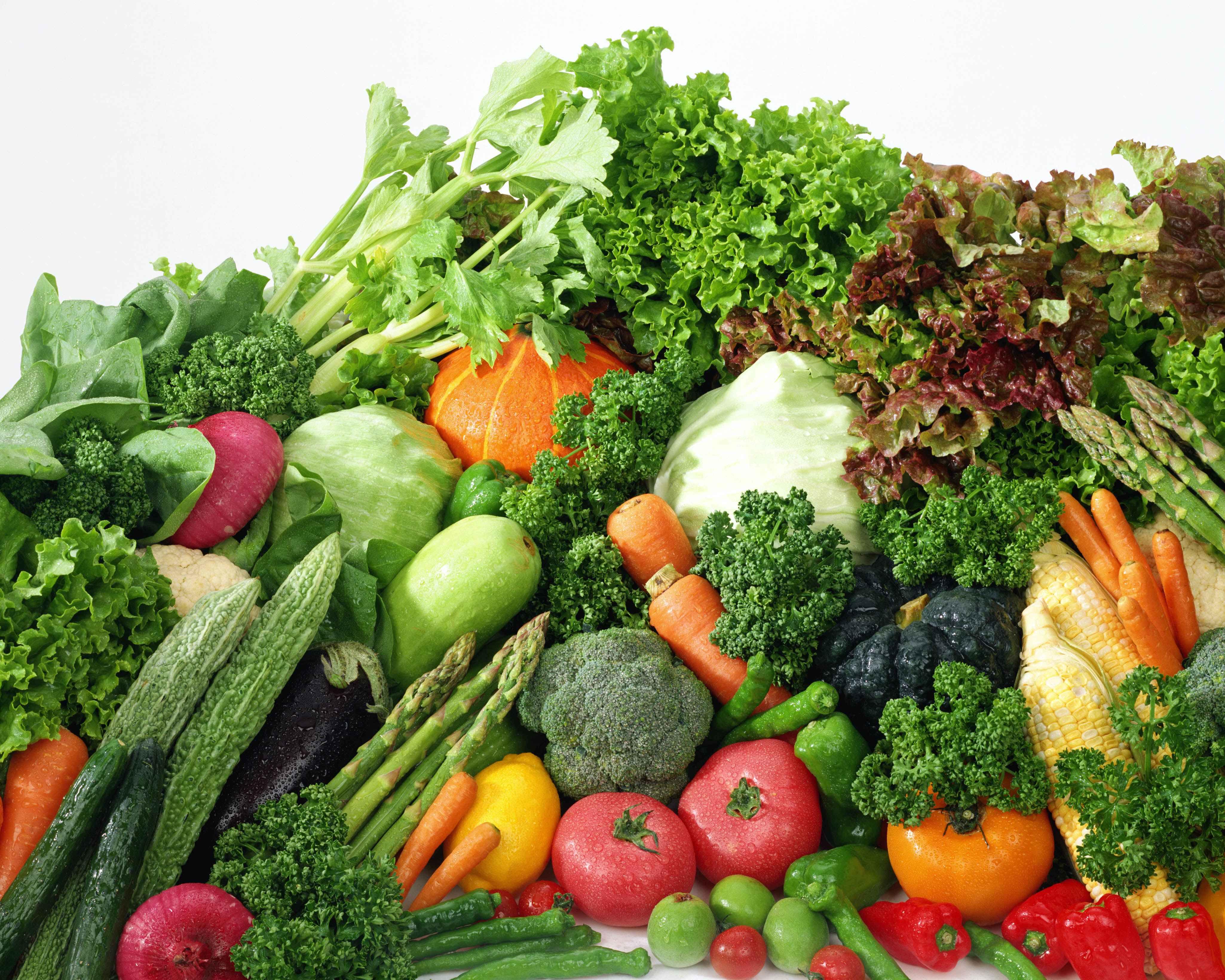 トータルヘルスサイト » 栄養